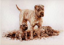 """On Guard"" Shar Pei Limited Edition Print by Roger Inman"